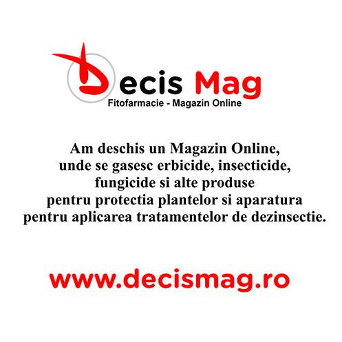 DecisMag-popup